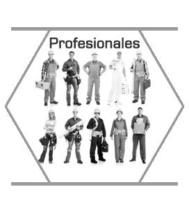 profesionales2