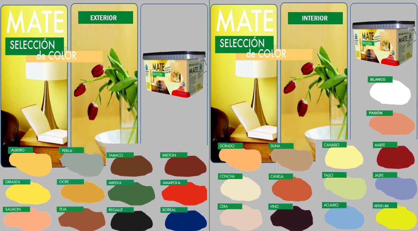 carta_mate_seleccion